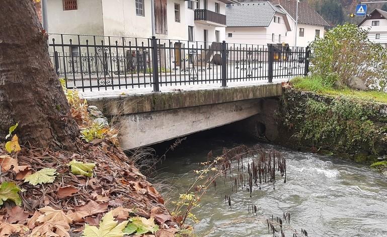 most češnjica (4)